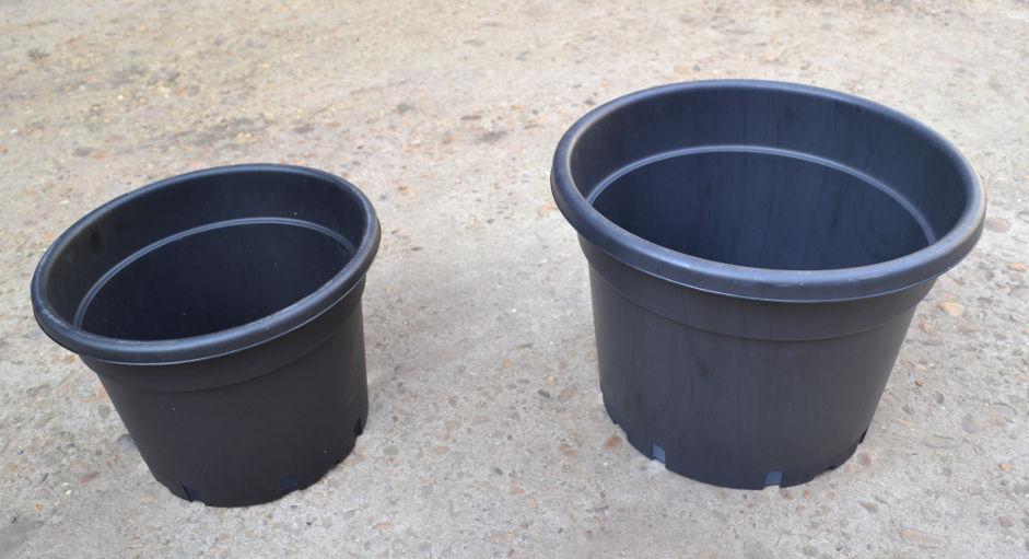 Kit de cultivo del l pulo en maceta venta de l pulo - Macetas de plastico grandes y baratas ...