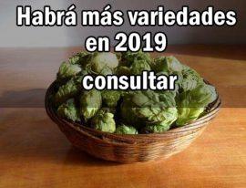 Novedades temporada 2019